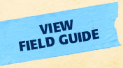 View Field Guide